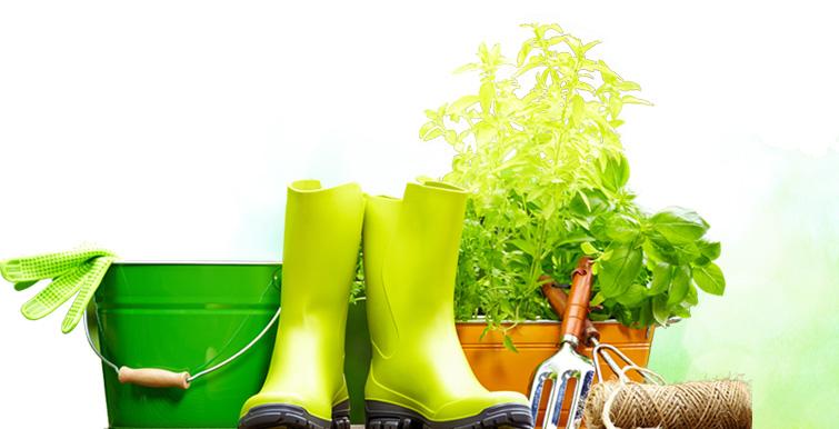 DV Arte Verde Manutenção de Jardim