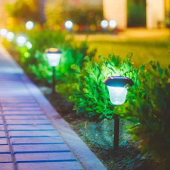 jardinagem e paisagismo RJ